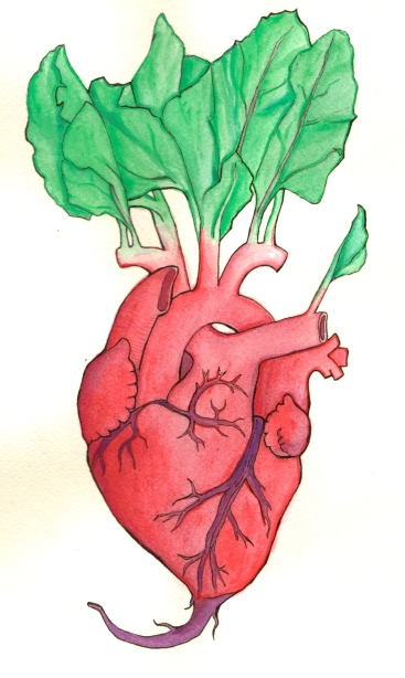 Heartbeet, Ink and gouache on paper, 2013