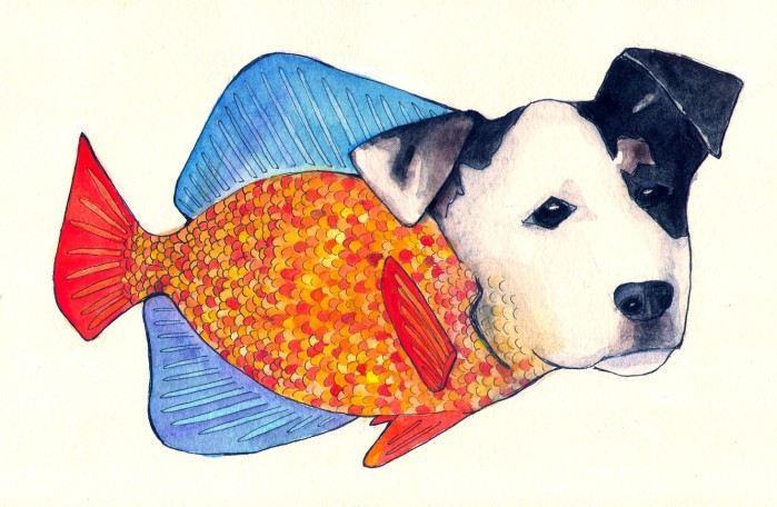 Dogfish, Ink and gouache on paper, 2013
